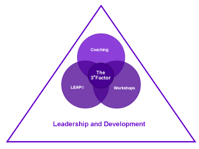 Image - The 3e Factor Model - Leadership and Development
